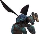 Zaffre Bee (MON)