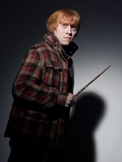 361px-DH1 Ron Weasley promo 01