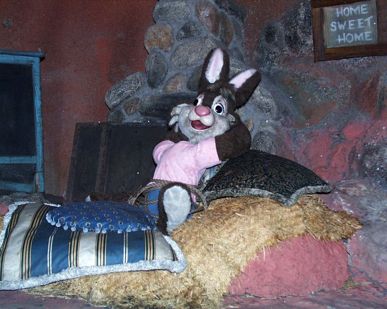 Brer Rabbit Disney Splash Mountain Brer Rabbit Splash
