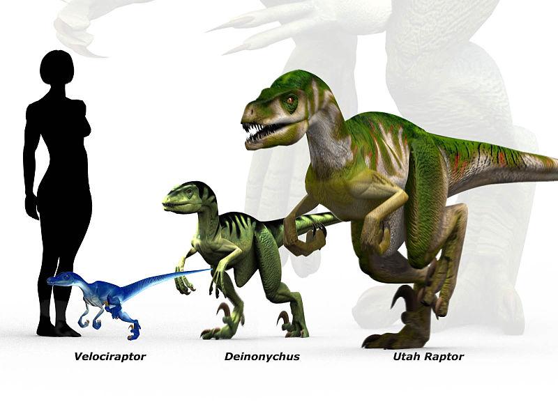 Forum:Utahraptor in JP - Park Pedia - Jurassic Park ...