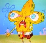 Y U NO   Y U No Spongebob