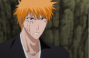 233Ichigo says this is not true.png