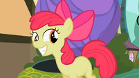 Apple Bloom grins S2E06