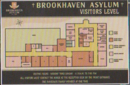 BrookhavenAsylumMap.png