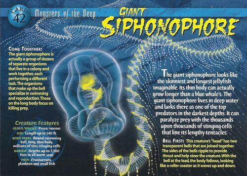 Giant Siphonophore Wierd N Wild Creatures Wiki Wikia