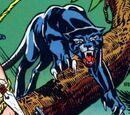 Biri (Earth-616)