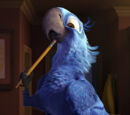 Main characters in Rio and Rio 2