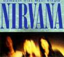 Smells Like Teen Spirit, Nirvana