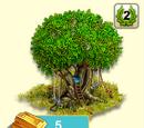 Alter Baum Spielwiese