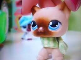 Lps Popular Angelina Related Keywords Suggestions Lps Popular