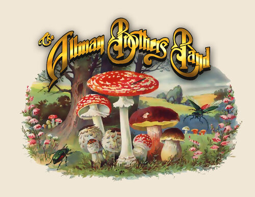 library article allman brothers rock tragedy