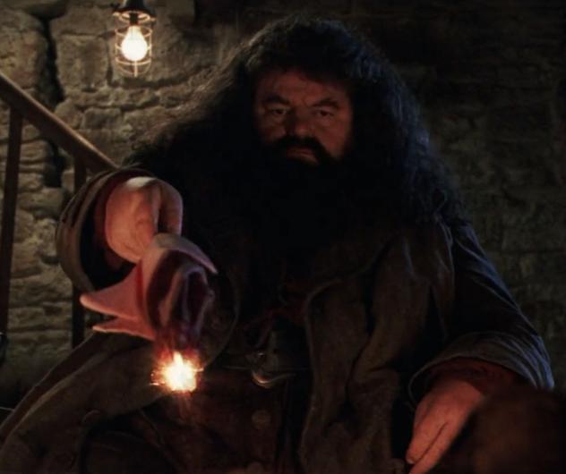 Rubeus Hagrid's wand - Harry Potter Wiki