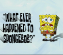 What Ever Happened to SpongeBob? (gallery)