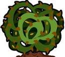 Bloonberry Bush