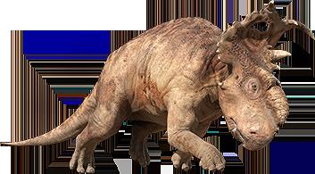 pachyrhinosaurus vs carnotaurus  Pachyrhinosaurus