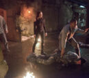 Arrow (TV Series) Episode: Keep Your Enemies Closer