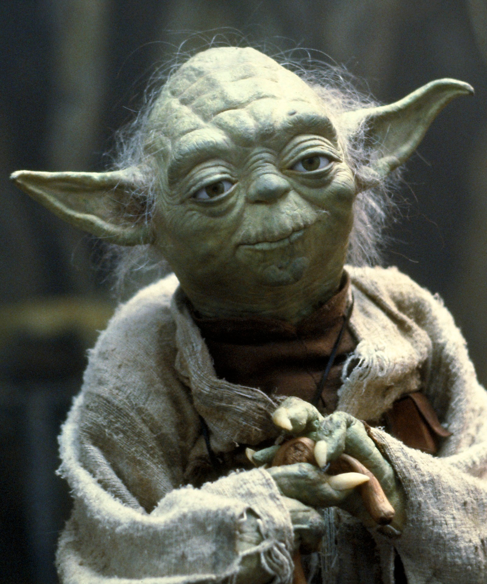 http://img1.wikia.nocookie.net/__cb20131106213953/starwars/images/d/d6/Yoda_SWSB.png