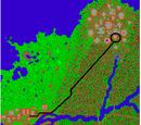 The Ape City Quest