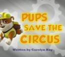 Pups Save the Circus