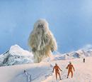 Phantom of the Snow Mountains