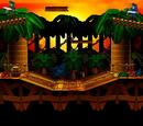 Jungle Kongo (64)