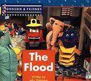 The Flood (Book)