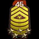 Rank 45