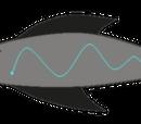 Water-type Dayan