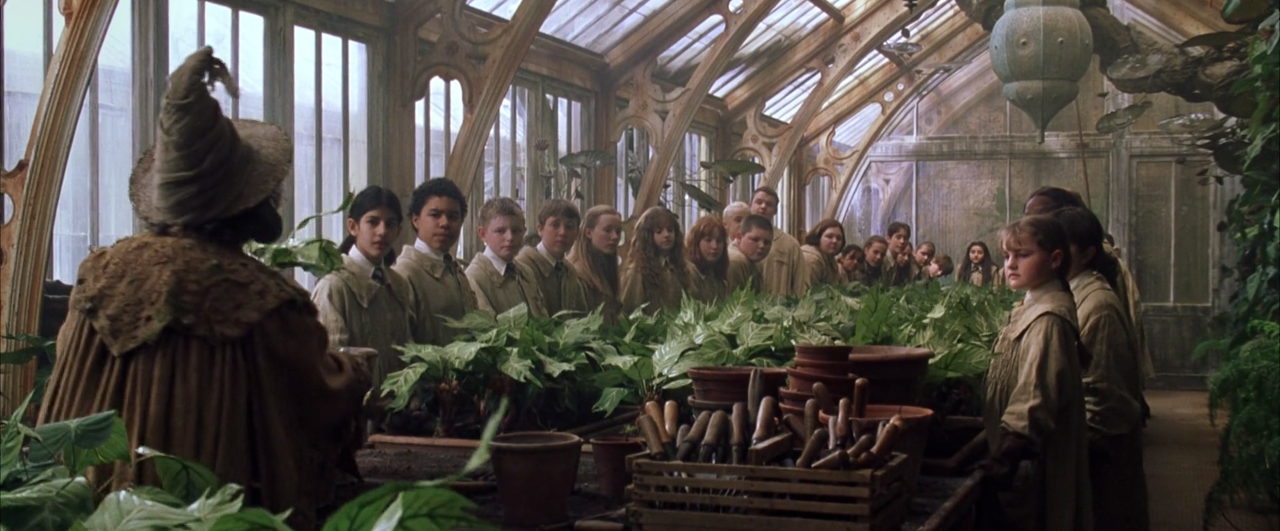 herbology classroom harry potter wiki. Black Bedroom Furniture Sets. Home Design Ideas