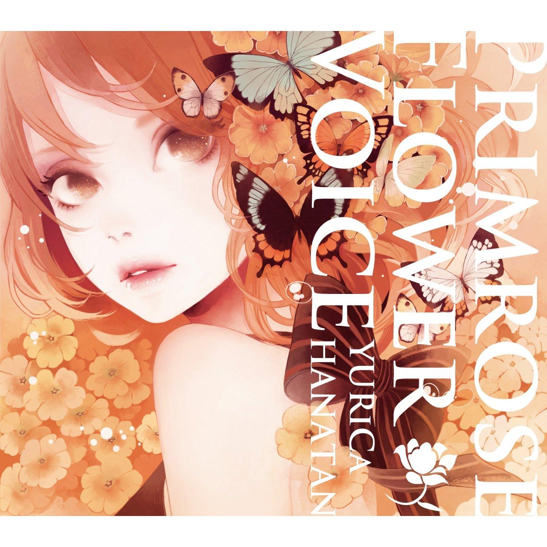 Sundrop Evening Primrose - Flower Essences | Flower ...