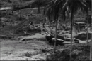 Damaged Ki-45 of 13th Sentai (1st View), Wewak-East Airfield 1943.png