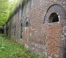 Fort Ia