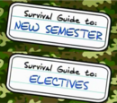 Guide to: The New Semester and Electives