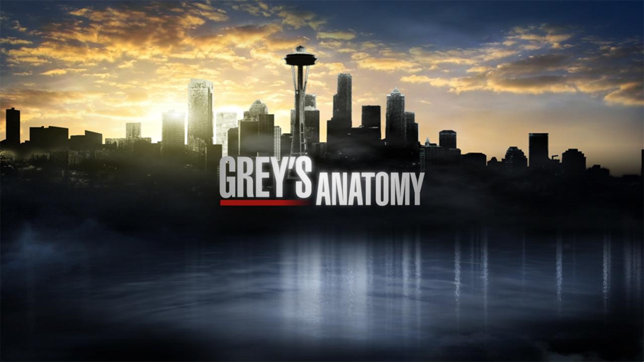 Anatomia de Grey. T.11� [Web-Dl 1080p][Dual+subt][1.5 Gb][ ZIPPY-UP-TF]