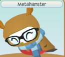 Metalhamster