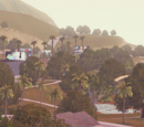 Starlight Shores