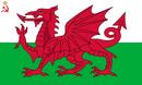 Flag of Welsh SSR (worcester- UDI 1996).png