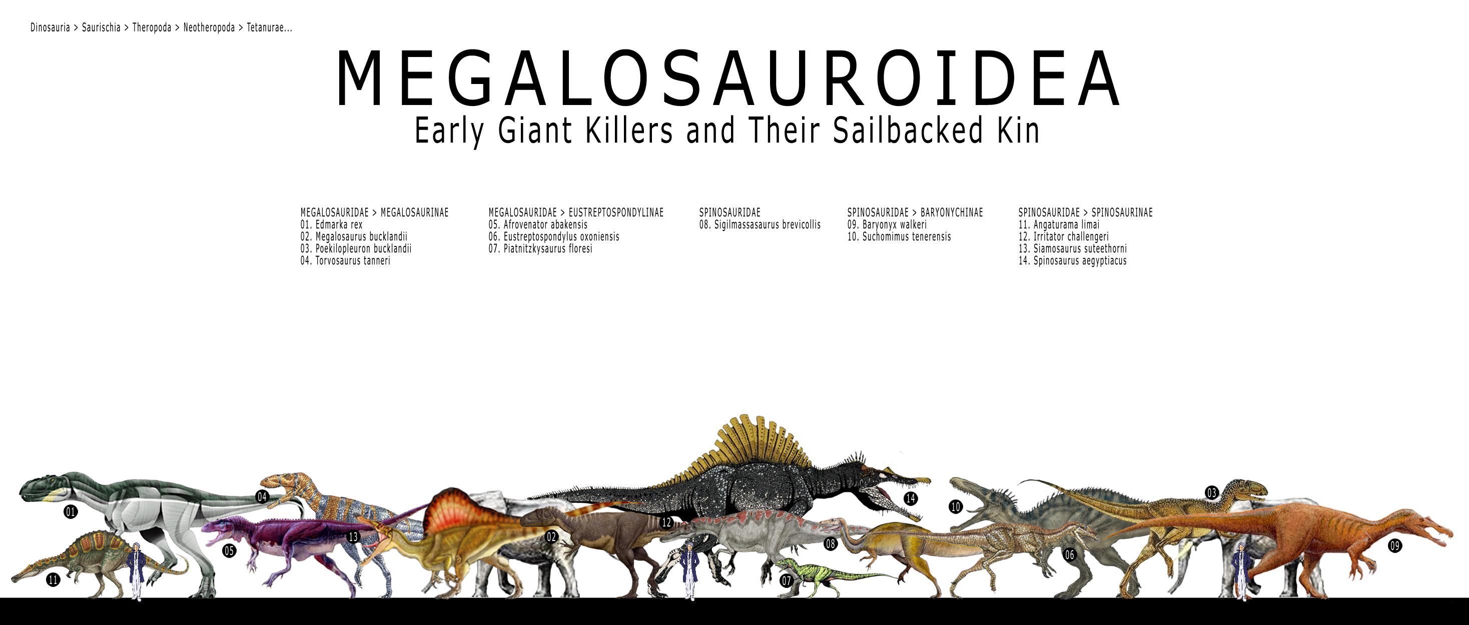 DSC_Megalosauroidea.jpg