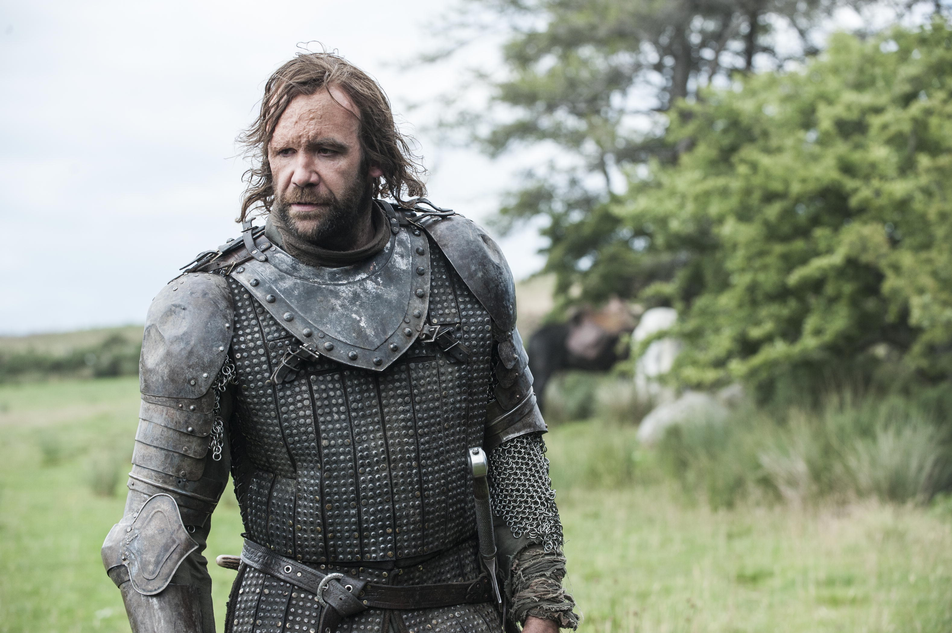 Rory McCann game of thrones