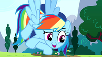 "Rainbow Dash ""it's my birth-iversary"" S4E12"