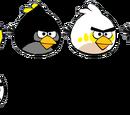Regular Bird