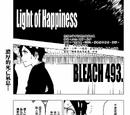 493. Light of Happiness
