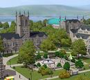 Университет Sims