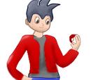 Pokémon Aventura Internacional/Audiciones