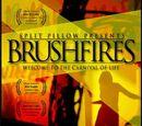 Возгорания (2004)