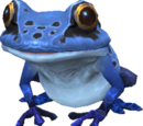 Azure Toad (MON)