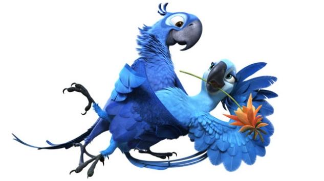 Image blu jewel dance jpg rio wiki