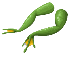 Image frogs legs sprite png here be monsters wiki wikia
