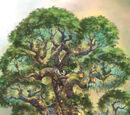 Heimat Baum