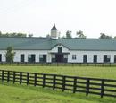 Amity/Farmhouses
